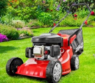 100-benzin-rasenmaeher-eco-wheeler-wo-1.jpg